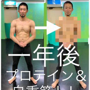 プロテイン&自重筋トレを一年間、毎日欠かさず続けたら肉体はどう変わるか、やってみたよ!